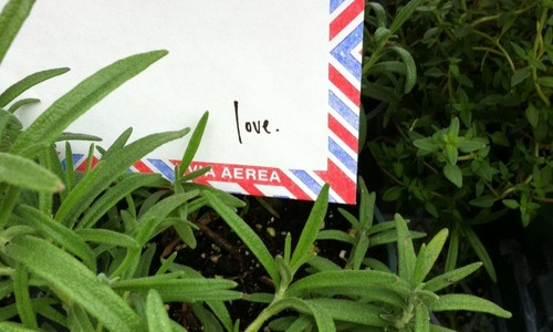 Http-__loveletteringproject.com_photo41-e1337045788527-764x1024